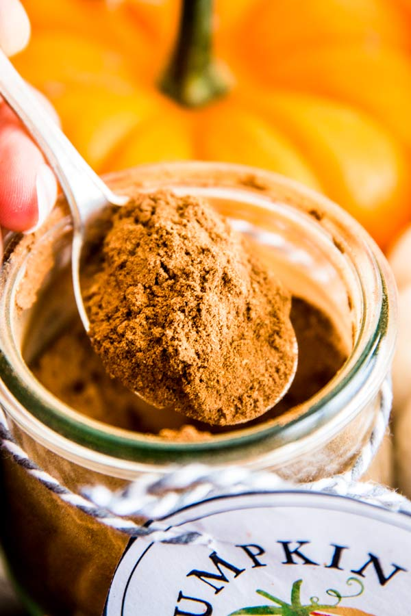 spoon of pumpkin spice mix