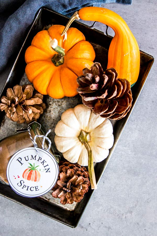 tray with pumpkins and homemade pumpkin spice mix
