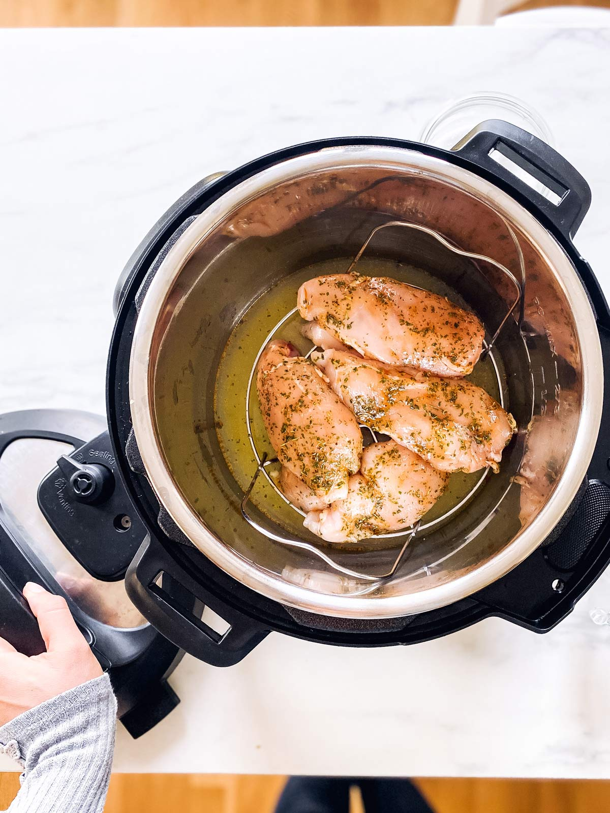 raw chicken breast on rack in instant pot